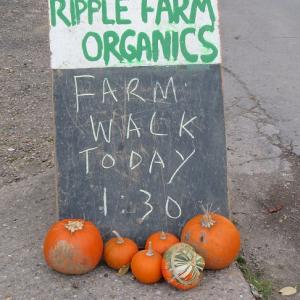 farm walk 2017 ripple farm organics