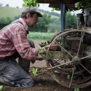 martin adjusting transplanter organic vegetable grower