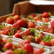 Strawberries (organic, Kent)