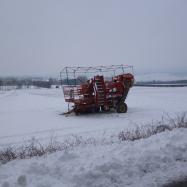 The farm under snow (organic, Kent)