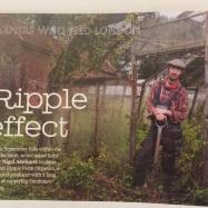 farmers who feed london jellied eel magazine article